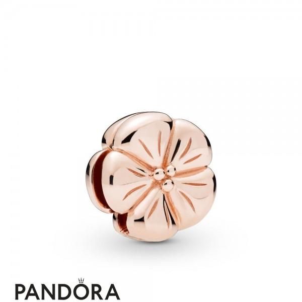 Pandora Rose Pandora Rose Reflexions Classic Flower Clip Charm