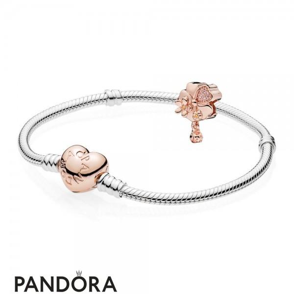 Pandora Rose Wildflower Meadow Gift Set